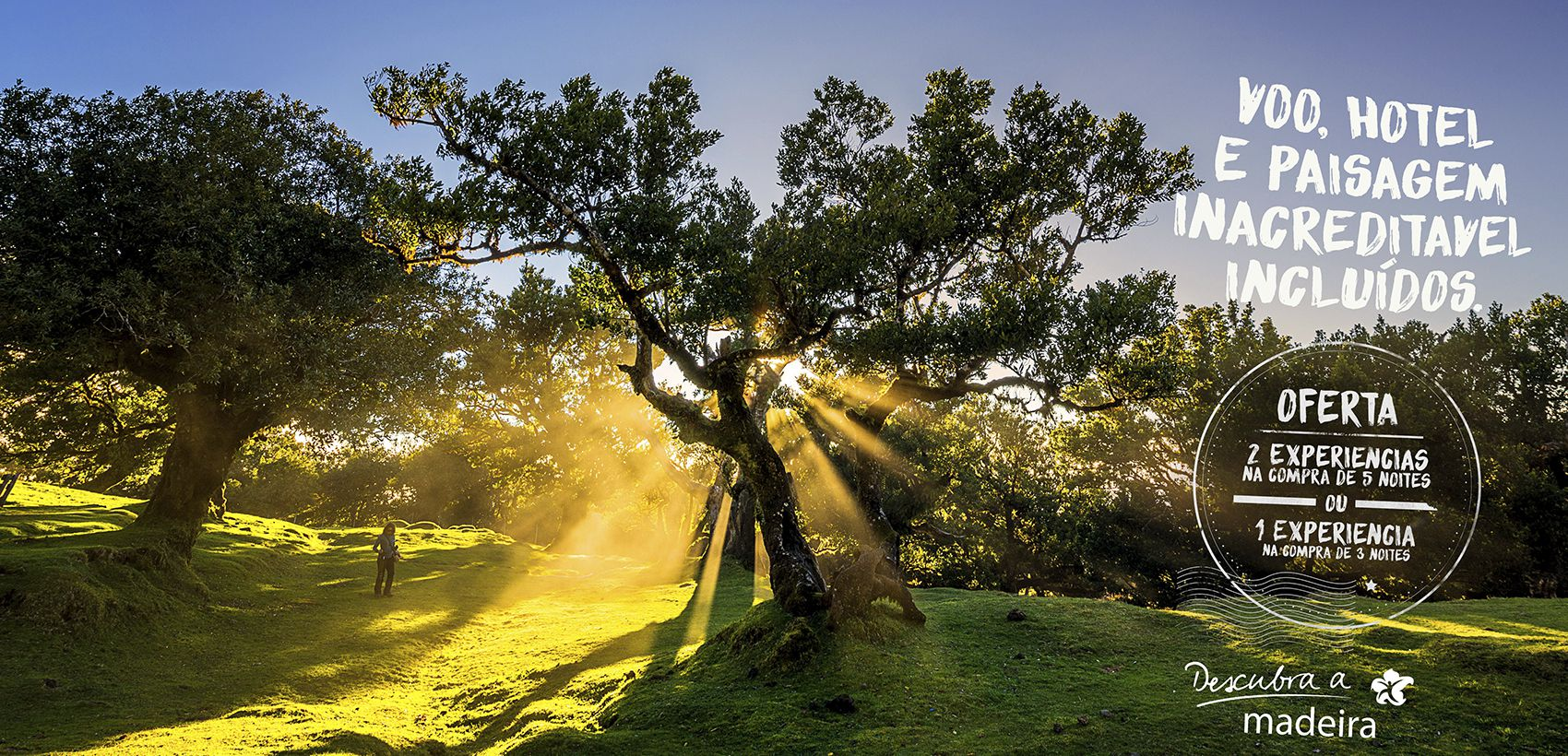 Experiências no Funchal: Especial Levadas