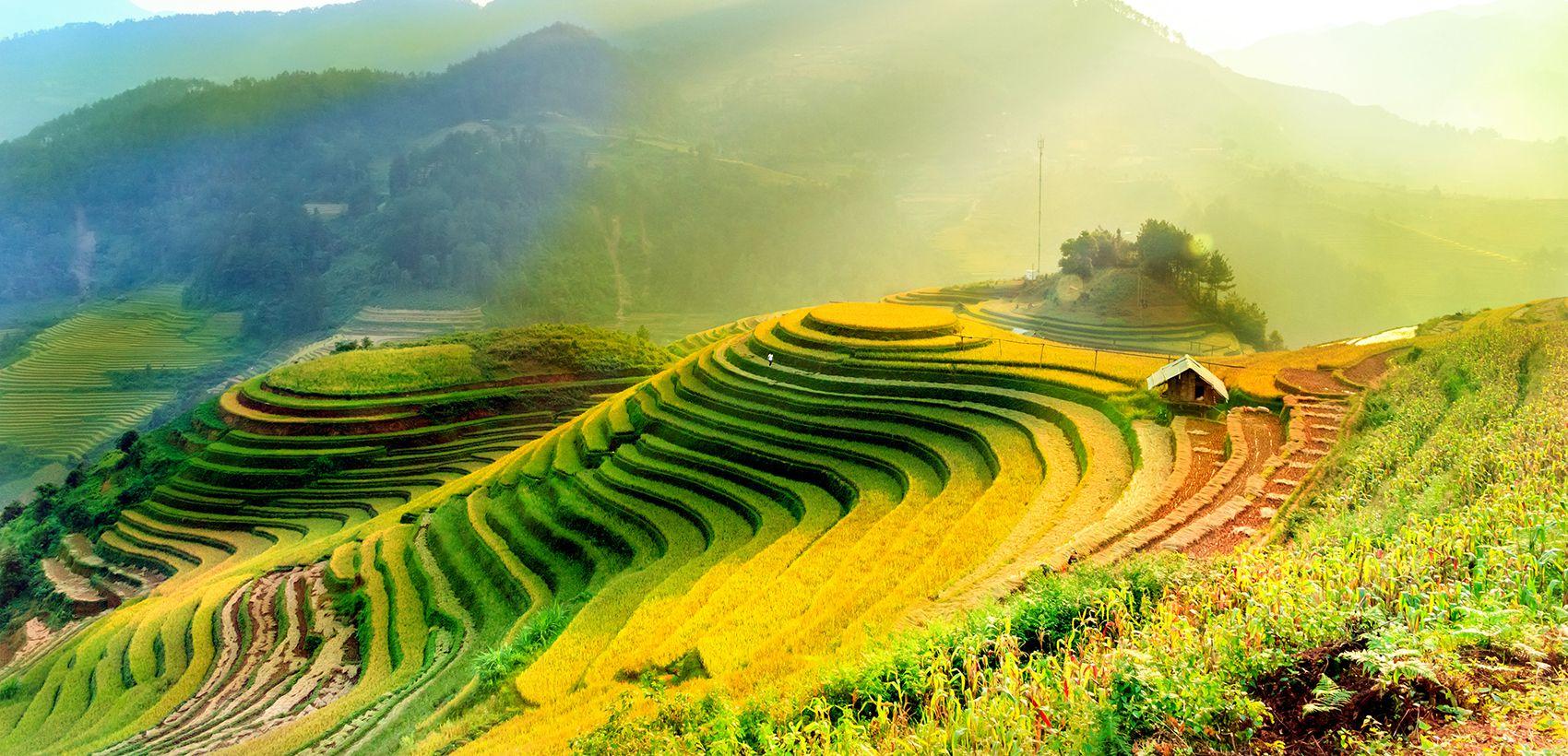Circuito Vietname Essencial