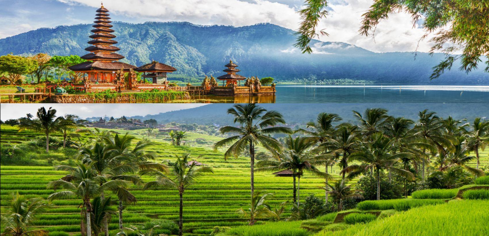 Bali & Ubud