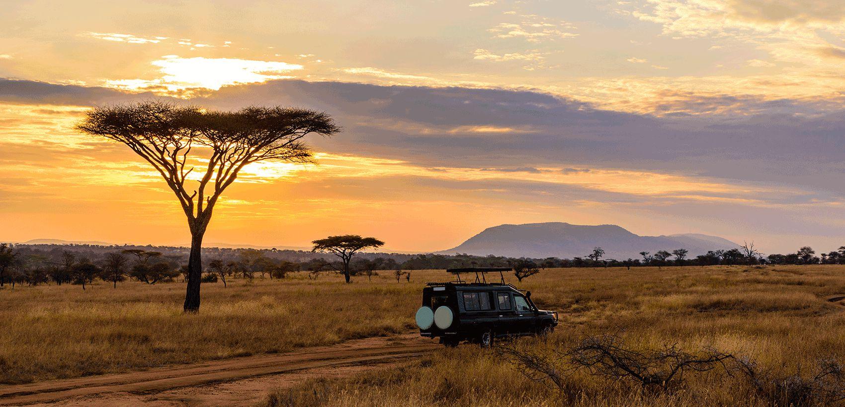 Moçambique: Maputo + Safari Kruger