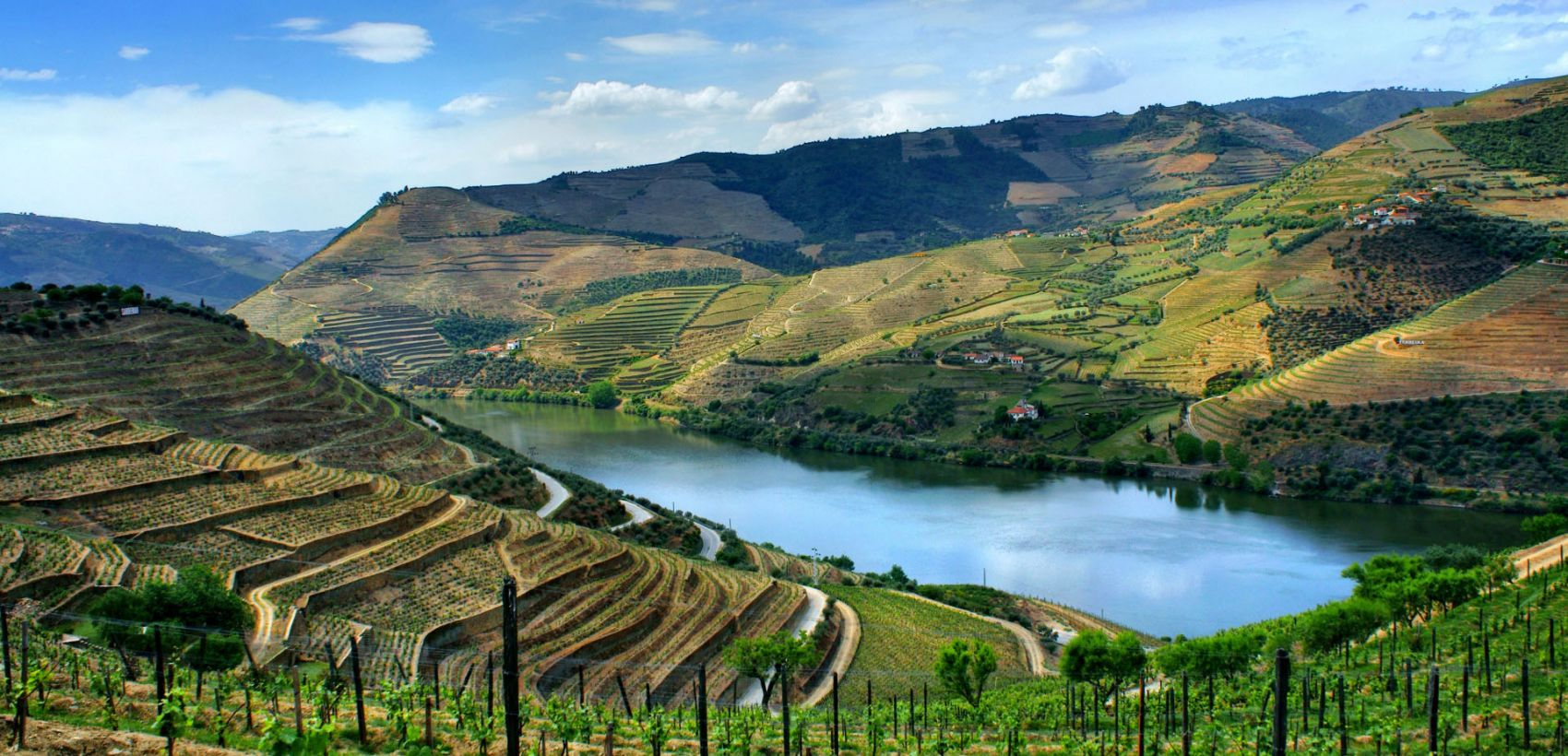 Iate Privado no Douro: Momentos a Bordo